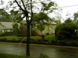 Starting to rain hard.jpg(304)