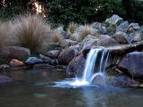 19 May 04 - Waterfall in Otari