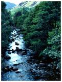 Small River - Lakes District, England 1981
