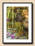 Evening Pond Reflections