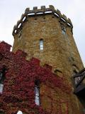 The Castle Pub 2
