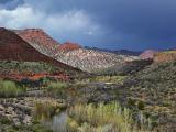 Arizona Images Gallery VI
