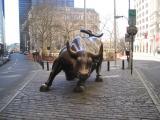 Bull at Battery Park