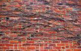 Southampton wall
