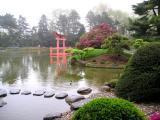 Brooklyn Botanical Japanese Gardens