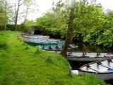 Killarney boat rentals