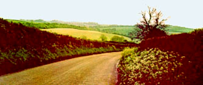 Road to Watership Down