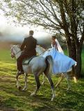 Eastern Free State Wedding