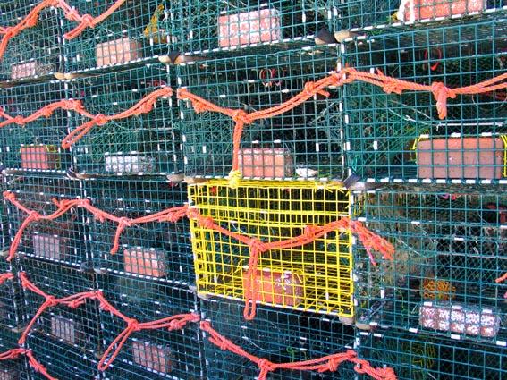 lobster cages.jpg