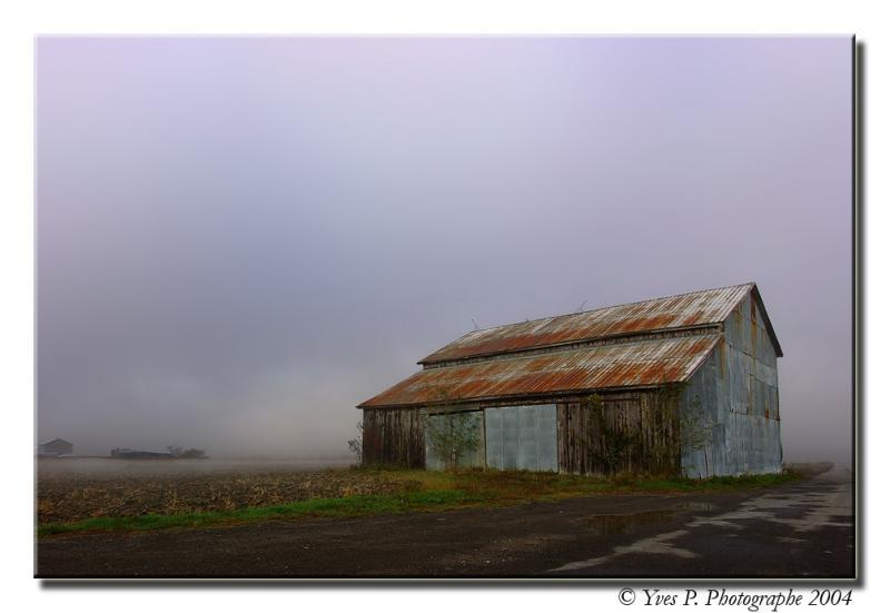 Fog and Barn ...
