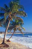 Praia de Ponta Negra, Natal-RN