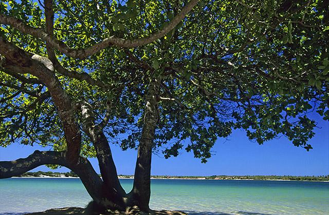 Lagoa do Carcará3.jpg