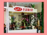 Yuri's Location...