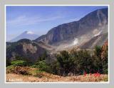 Cikuray Mount at the back