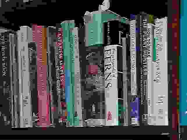 books.0.8.jpg