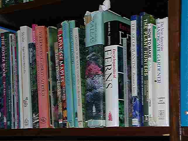 books.15.24.jpg