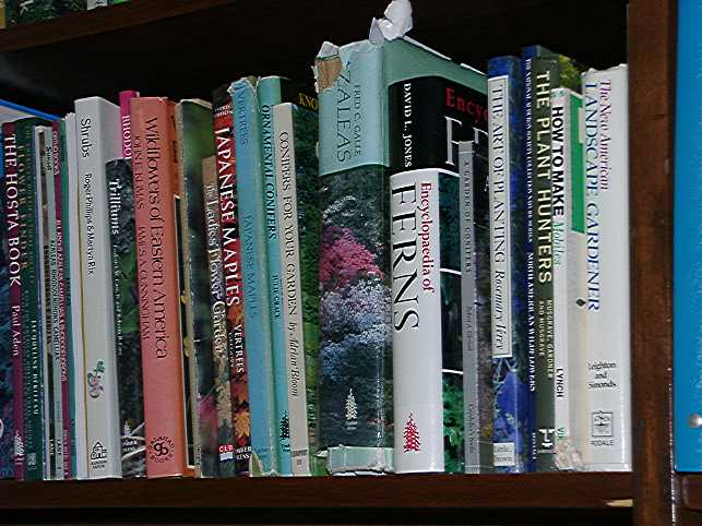 books.50.50.jpg