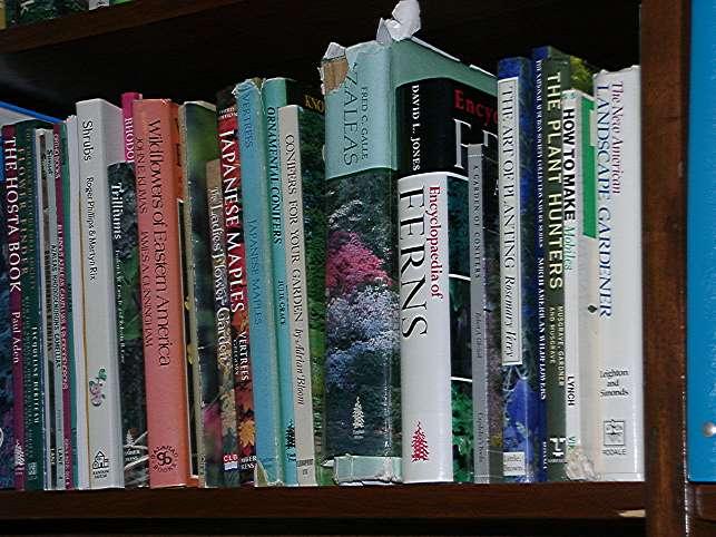 books.60.56.jpg