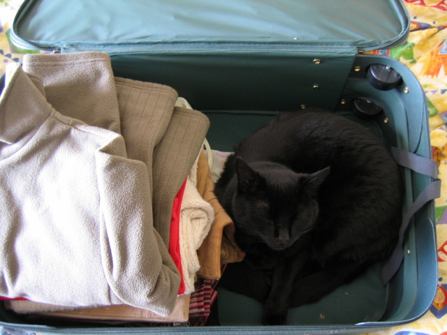 I Want to Come Too!!