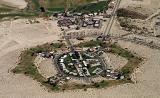 The desert community in detail