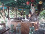 Treetanic Bar, Utila