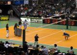 sportsvolleyball08.jpg