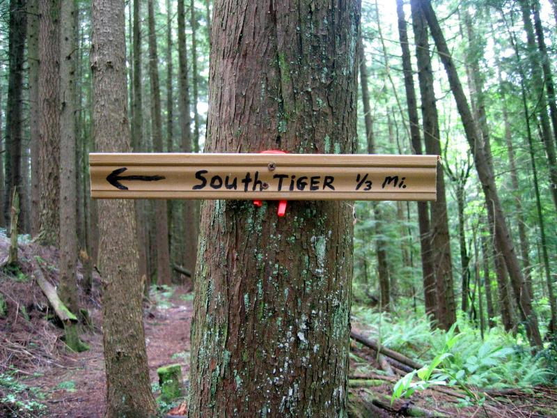 South Tiger sign