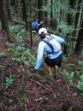 The bushwhacking section