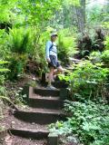 Nice steps