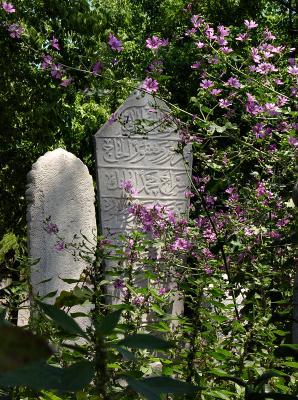 Ottoman cemetery in Fatih