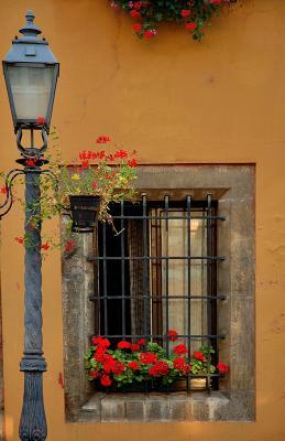 Window in Buda