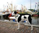 Joop's Dog Log - Thursday June 03
