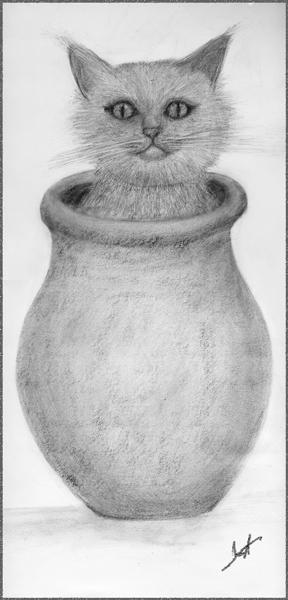 Kat-in-a-Vase - graphite-