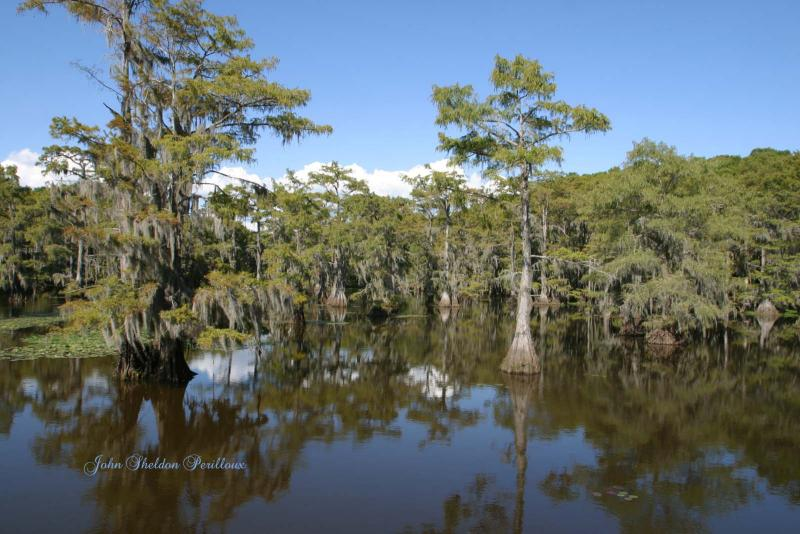 Caddo Lake