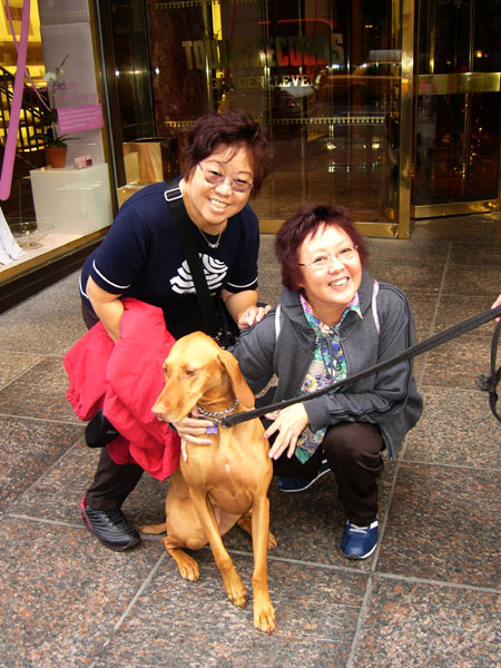Doggie and 2 sisters outside Trump Building...