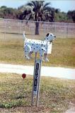 Dog Dalmation