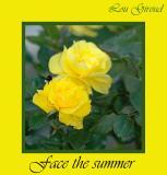 Face the summer - June 01-04