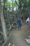A very steep climb