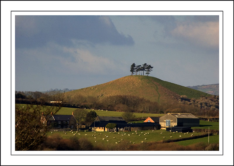 Farm, hill, and trees ~ west of West Bay, Dorset