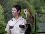 Owl.jpg(151)