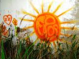 Graffiti and nature