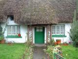 Ireland Winter 2005