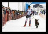Int. Schlittenhunde Rennen Lenk [20-Feb-2005]