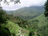 Ghorapani ( Poon Hill ) To Ghandruk - Annapurna N.P.