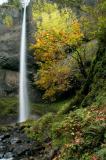 Latourell-Falls S.jpg