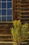 Window and wood planks