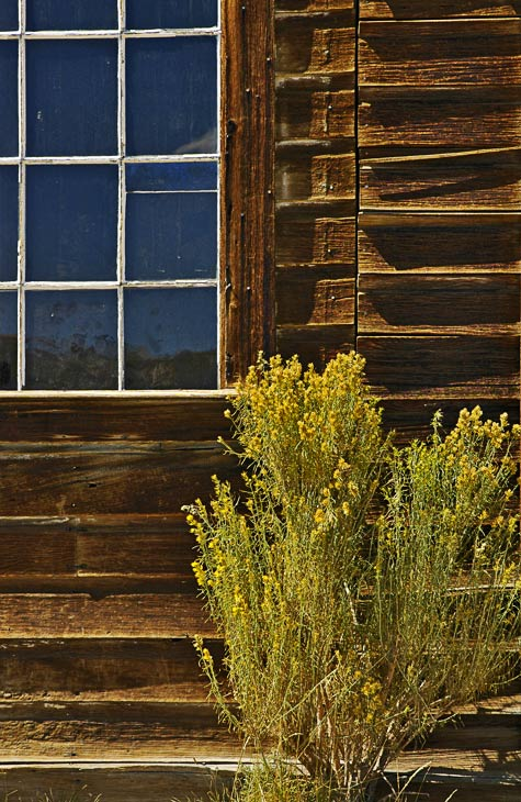 Window and wood planks