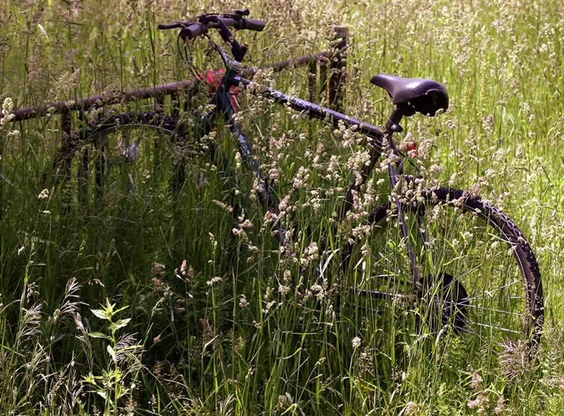 June 4, 2004 - Forgotten ride