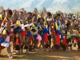 Swazi Reed Dance