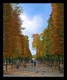 Jardin Tuelleries